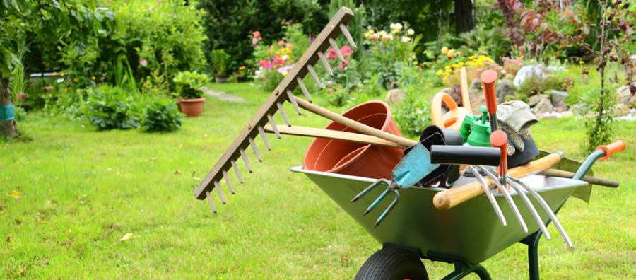 Quanto è importante la cura e la manutenzione del giardino?