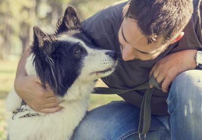 I migliori corsi animal care oggi disponibili sul mercato
